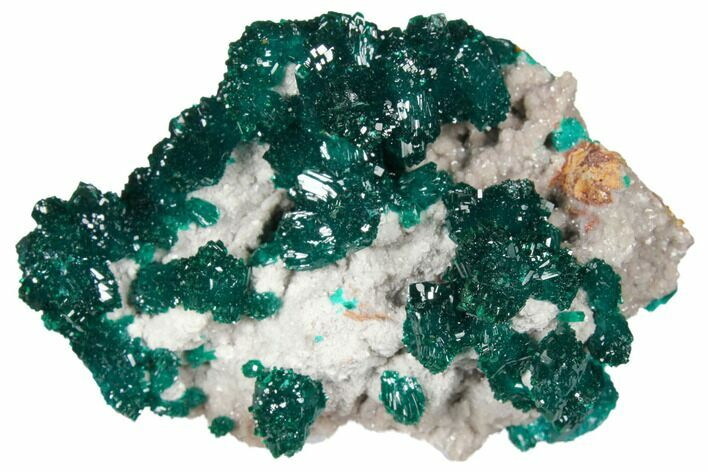 "2.15"" Gemmy Dioptase Crystals on Dolomite - Ntola Mine, Congo"
